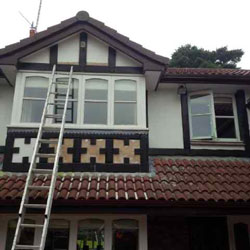 External Decorator Cheshire